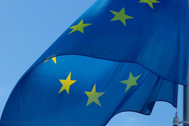 Пропозиція Зеленського щодо КСУ є порушенням Конституції - євродепутат 1