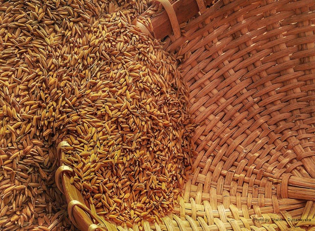 Ukraine quadrupled grain exports 1