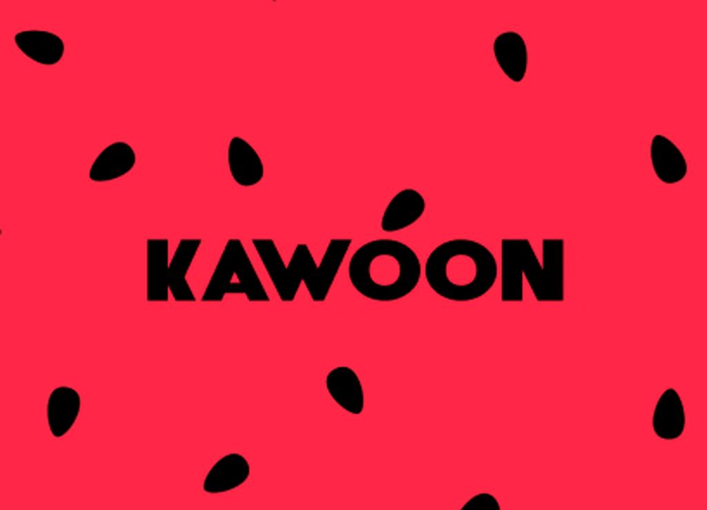 Український месенджер Kawoon зібрав $100 тис інвестицій 1